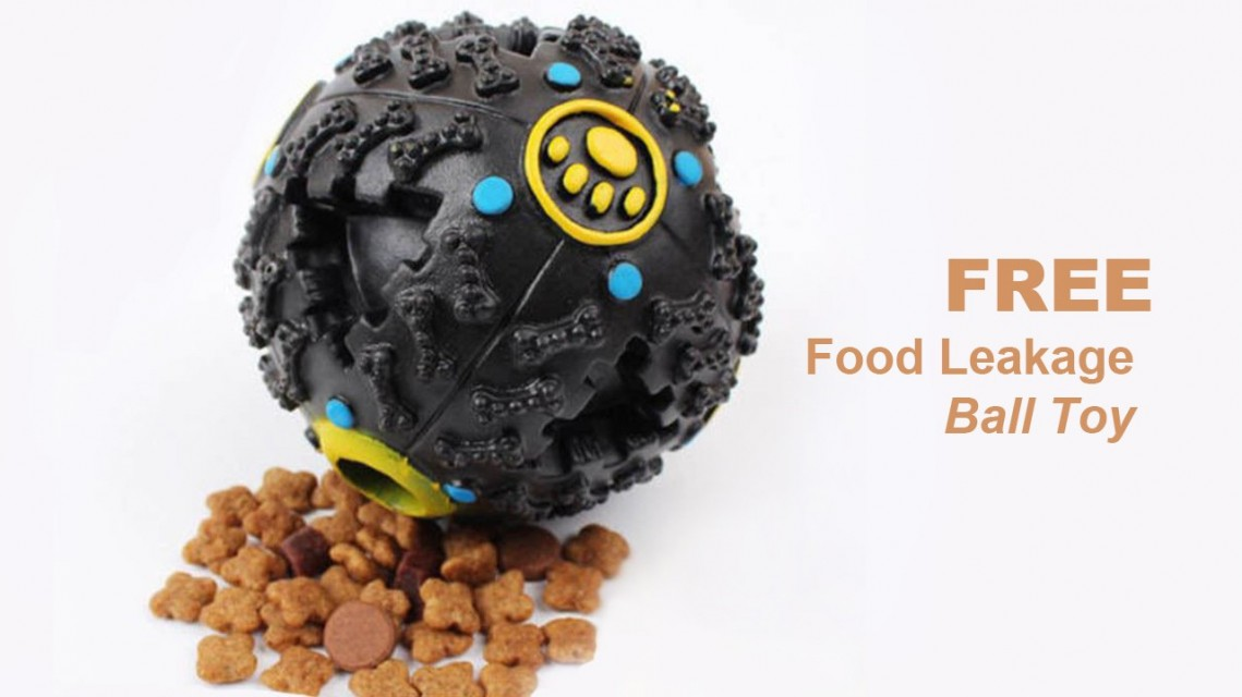 LEAKAGE FOOD BALL Toy